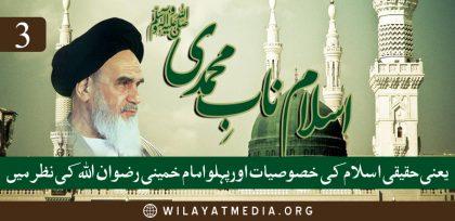 ? اسلام نابِ محمدی یعنی حقیقی اسلام کی خصوصیات اور پہلو امام خمینی رضوان اللہ کی نظر میں | تیسرا حصہ